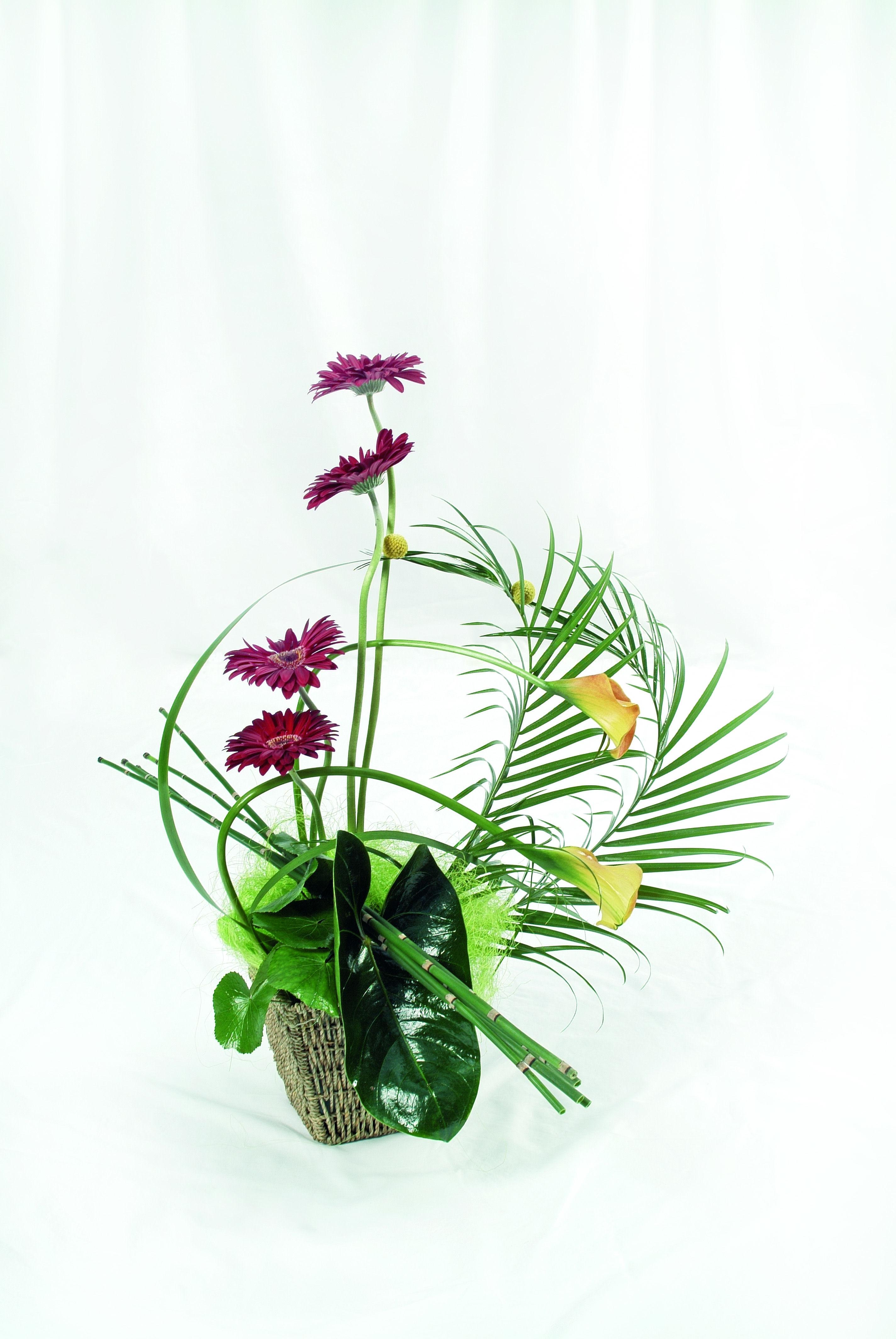 Simple Modern Flower Arrangement Flower Cellar Shop